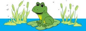 P3-FrogOnLilyPad-Headline